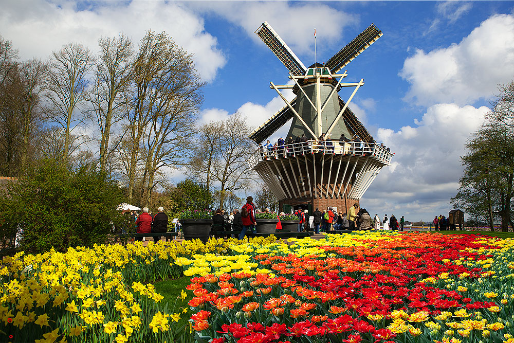 Hà Lan - Bỉ - Pháp (ECO-Siêu tiết kiệm)